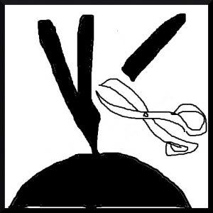 ドレッドの抜け毛対策2 コンゴにより枝分かれしたドレッドの切断