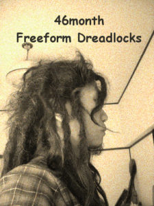 46ヶ月経過。日本人のフリーフォームドレッド Japanese freeform dreadlocks 46month-1