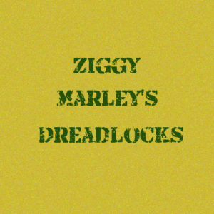 ジギー・マーリーのドレッドヘア