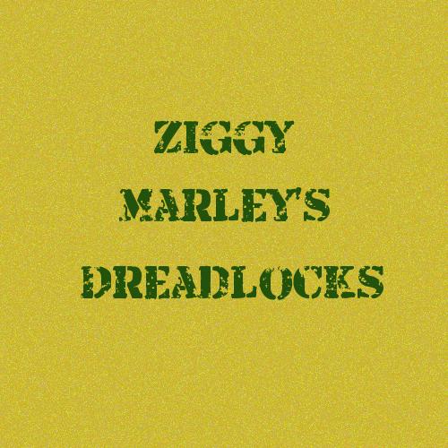 ジギー・マーリーのドレッド。Zggy Marley's dreadlocks